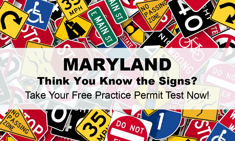 maryland drivers license practise test