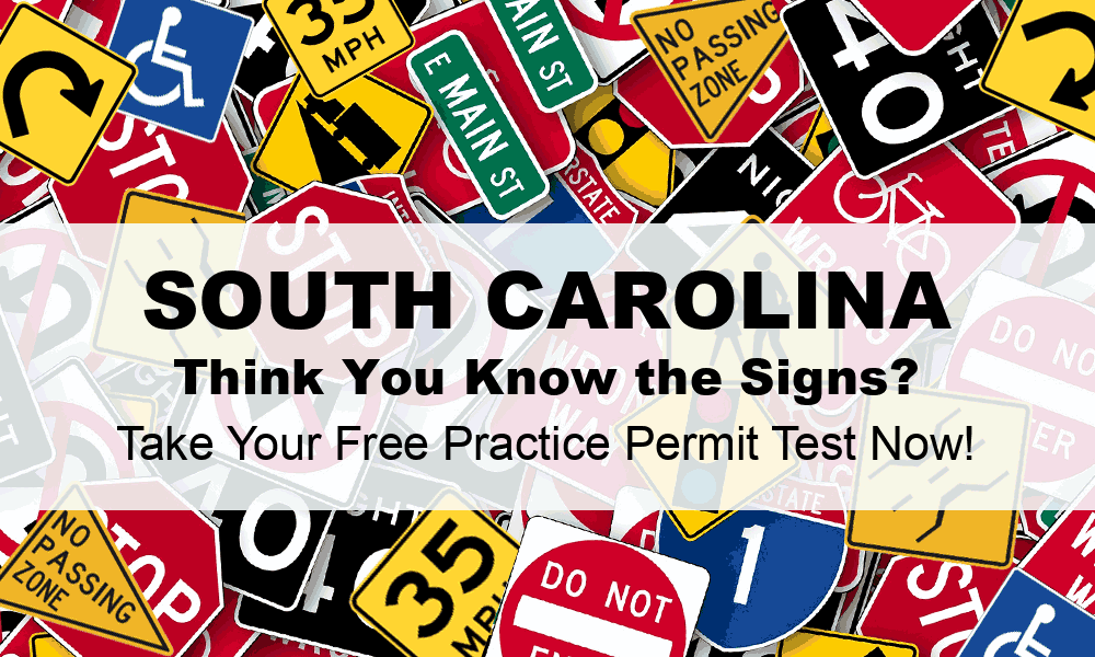 sc dmv drivers license address change